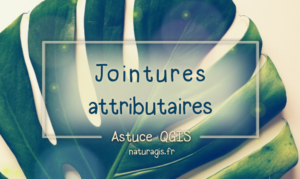 QGIS jointure attributaire