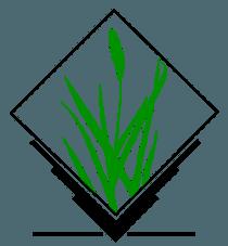 logiciel SIG libre gratuit QGIS et GrassGIS