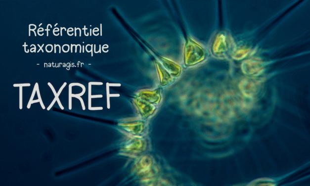 TAXREF, le référentiel taxonomique national pour les données d'espèces