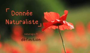 donnée naturaliste définition