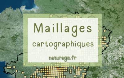 Types de mailles pour analyses cartographiques environnementales